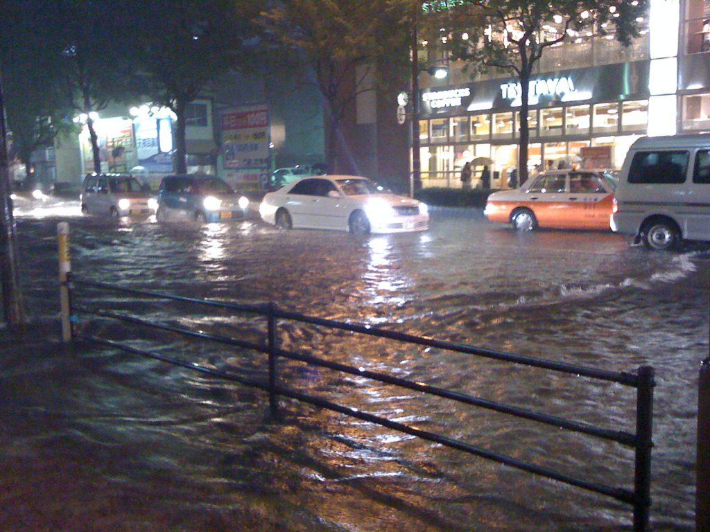 台風 防水対策 大杉ハウス